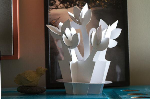 papír_virág_növény